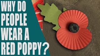 Why do people wear a red poppy? What is Poppy Day? Remembrance Day - English Topic