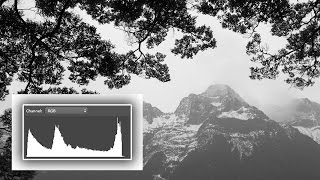 What The Heck Is A  Histogram?? Understand Digital Photographys Most Useful Tool