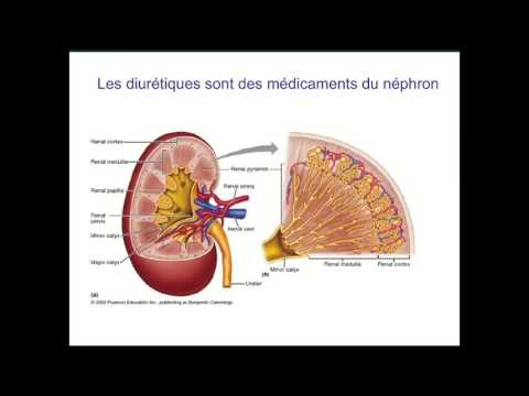Questions pour les patients de lhypertension