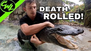 DEATH ROLLED BY ALLIGATOR!!!
