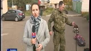 Как работает кинологическая служба татарстанской таможни