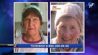 В Боровичском и Новгородском районах идут поиски 2 пожилых женщин