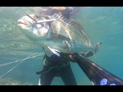 Spearfishing Greece ~