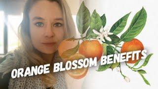 ORANGE BLOSSOM BENEFITS; How to make Orange Blossom Water