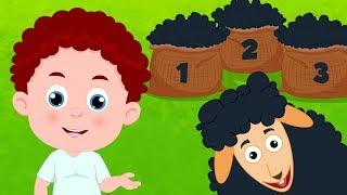 Baa Baa Black Sheep | Schoolies Cartoons | Nursery Rhymes For Children