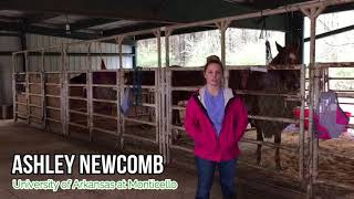 March Madness Student Highlight: Ashley Newcomb