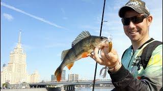 Рыбалка форум в москве