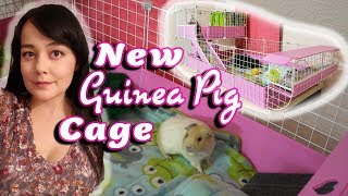 Guinea Pig Cage Unboxing | Cavy Cafe, Lookout Lounge, And More!