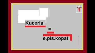 Powoli kuceria ODKRYWA oblicze e.pis.kopatu