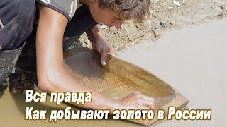 Вся правда - как добывают золото в России. С чистого листа.