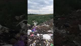 Горит мусоросвалка в селе Кирсово