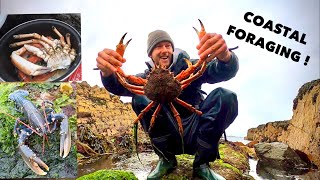 HUGE FORAGED SPIDER CRAB , Lobster , COOKING Fresh Crab on a Beach !