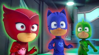 Splat them, Ninjalinos! | HD | PJ Masks Official