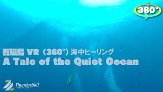 石垣島VR(360°)海中ヒーリング【A Tale of the Quiet Ocean】