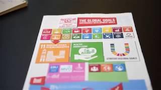 Wat zijn de global goals?