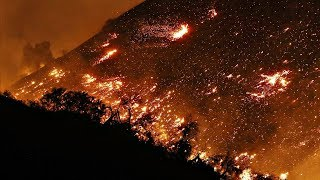Южная Калифорния: десятки тысяч человек эвакуируются из-за лесных пожаров (новости)
