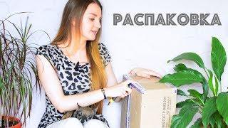 Посылка из кондитерского магазина ☆ Тортомастер ☆ Распаковка