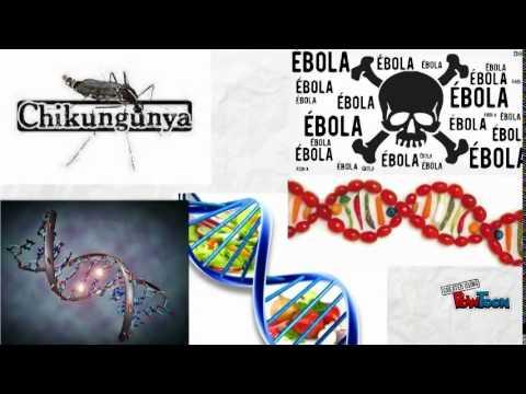 ¿Qué es la epidemiología?