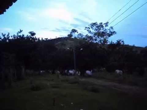 Fazenda em Jampruca