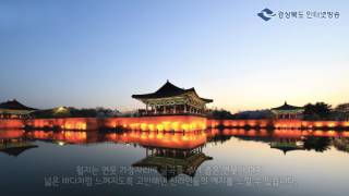경북탐구생활 - 경주 야간 시티투어