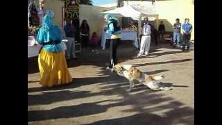 preview picture of video 'Baile Religioso Gitano San Juan Coquimbo'