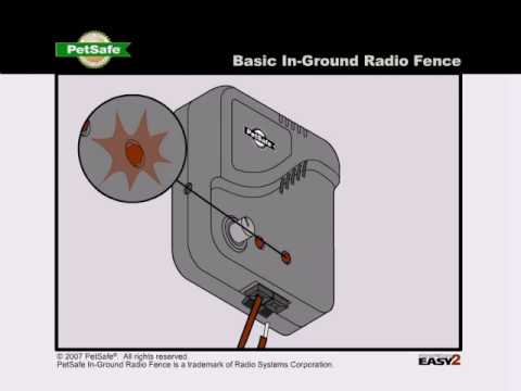 PetSafe—Troubleshooting Tips for the In-Ground Radio Fence