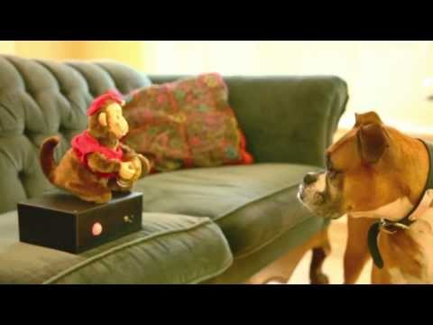 The Monkey Couch Guardian Keeps Pets Off Furniture
