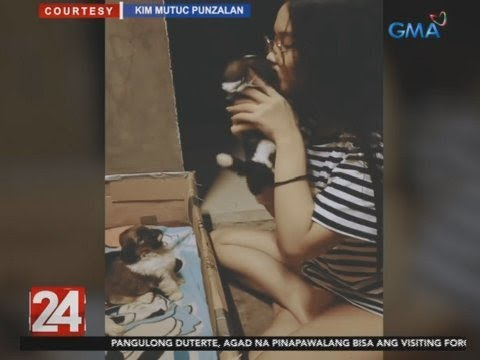 [GMA]  24 Oras: Mga tuta na tila sleeping beauty agad nang i-good night kiss ng kanilang   amo, kinaaliwan
