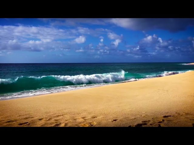 Relax! Ocean Waves Seaside Ambience | for Stress Relief | White Noise Surf Sounds in Hawaii 10 Hours