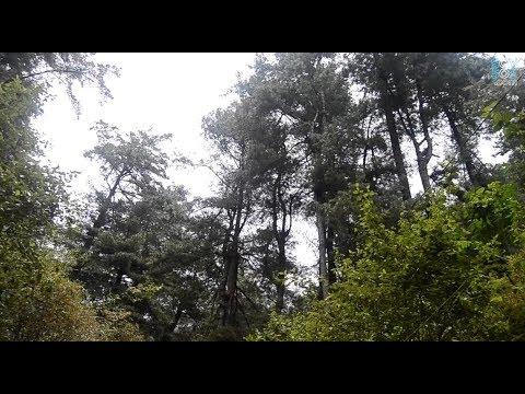 Parque Ecológico Chajil Siwan