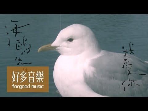 魏如萱-海鷗先生我愛你