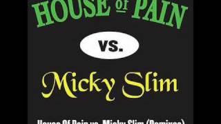 House Of Pain - Jump Around (Micky Slim Remix)