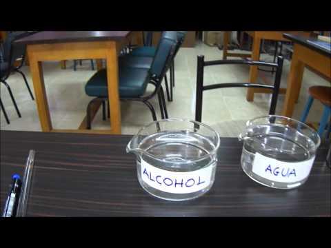 El alcoholismo de la característica de las fases