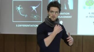 Ma thèse en 180 secondes - Finale UCL 2016 - Dario CARRADORI