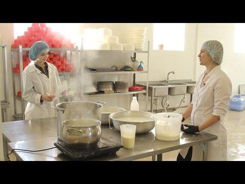 #вБизнесе. Как открыть сыроварню (16.12.2019)