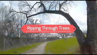 Ripping Through Trees -- FPV Freestyle