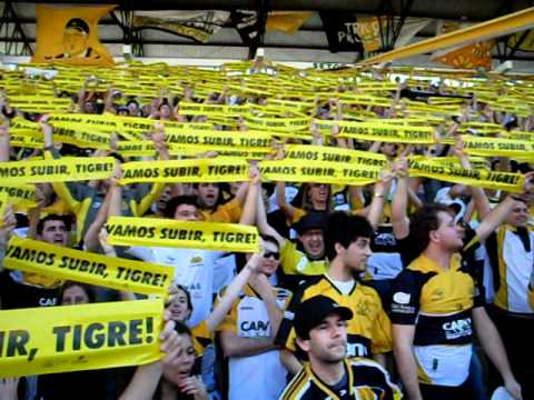 """vamos subir, tigre !!dali dali tigreee !!"" Barra: Os Tigres • Club: Criciúma"