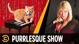 Purrlesque Entertainment: Kitten Dancers - Mini-Mocks