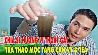 UỐNG TRÀ HƯƠNG VỊ TRÀ THẢO MỘC TĂNG CÂN VY TEA