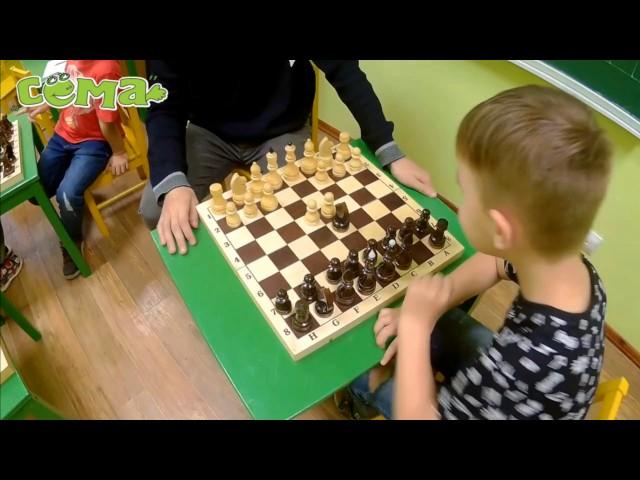 Курс «Шахматы»
