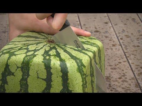 Квадратные арбузы Японии / Square watermelons Japan / 四角スイカ