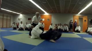 Yamada Sensei Aikido Special Class Mallorca 2017