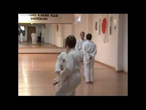 Graduering Karate samt Airshow 2005