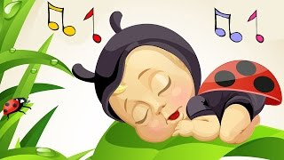 Baby Lullabies and Nature Sounds