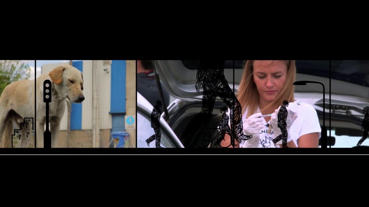 ΣΥΝΑΝΤΗΣΕΙΣ ΜΕ ΑΞΙΟΣΗΜΕΙΩΤΟΥΣ ΑΝΘΡΩΠΟΥΣ «Greek Animal Rescue»  | 5/12/2018 | ΕΡΤ