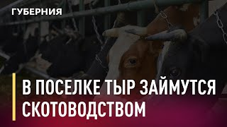 Рыбный колхоз «Память Ленина» в посёлке Тыр занялся ско...