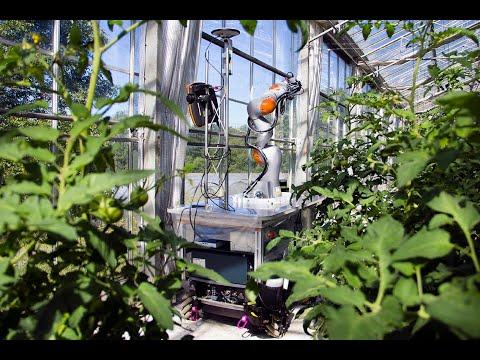 Robot koji prepoznaje insekte i ciljano ih uništava