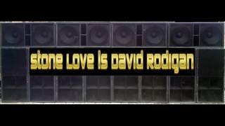 Stone Love ls David Rodigan [199x] ( bothsound )
