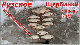 Клев рыбы в подмосковье на неделю руза