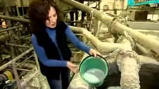 Как перерабатывают бумагу (макулатуру)